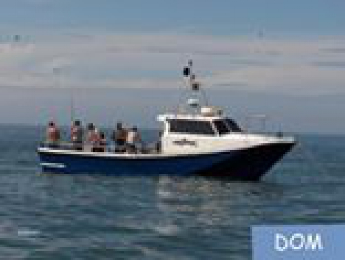 bateau de peche sportive d'occasion